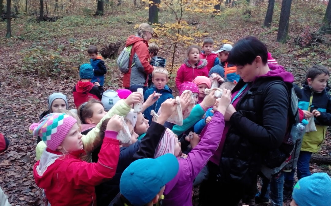 Eko-program Podzim s veverkou
